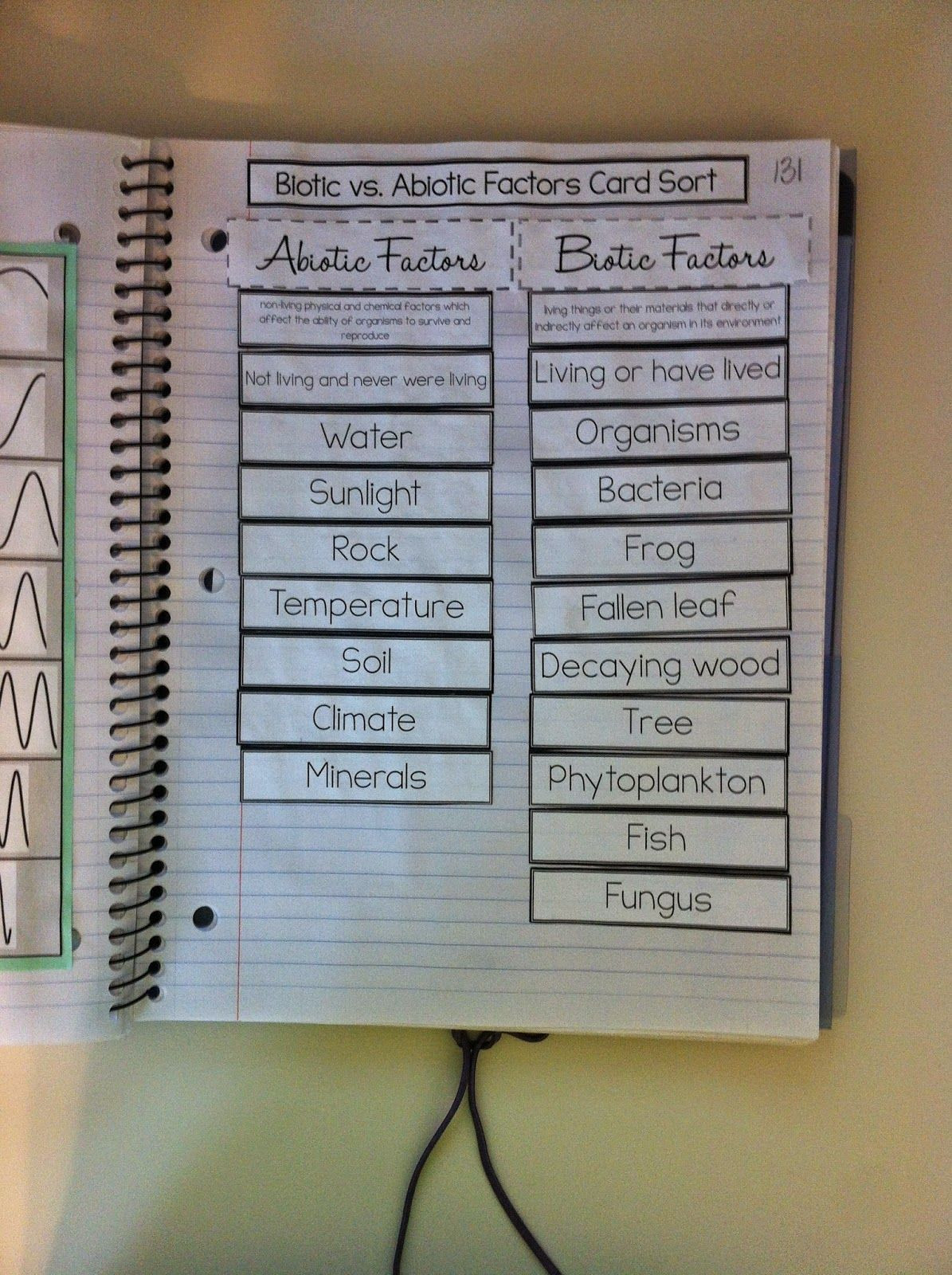 Abiotic Vs Biotic Factors Worksheet Answers Setting Up Interactive Science Notebooks