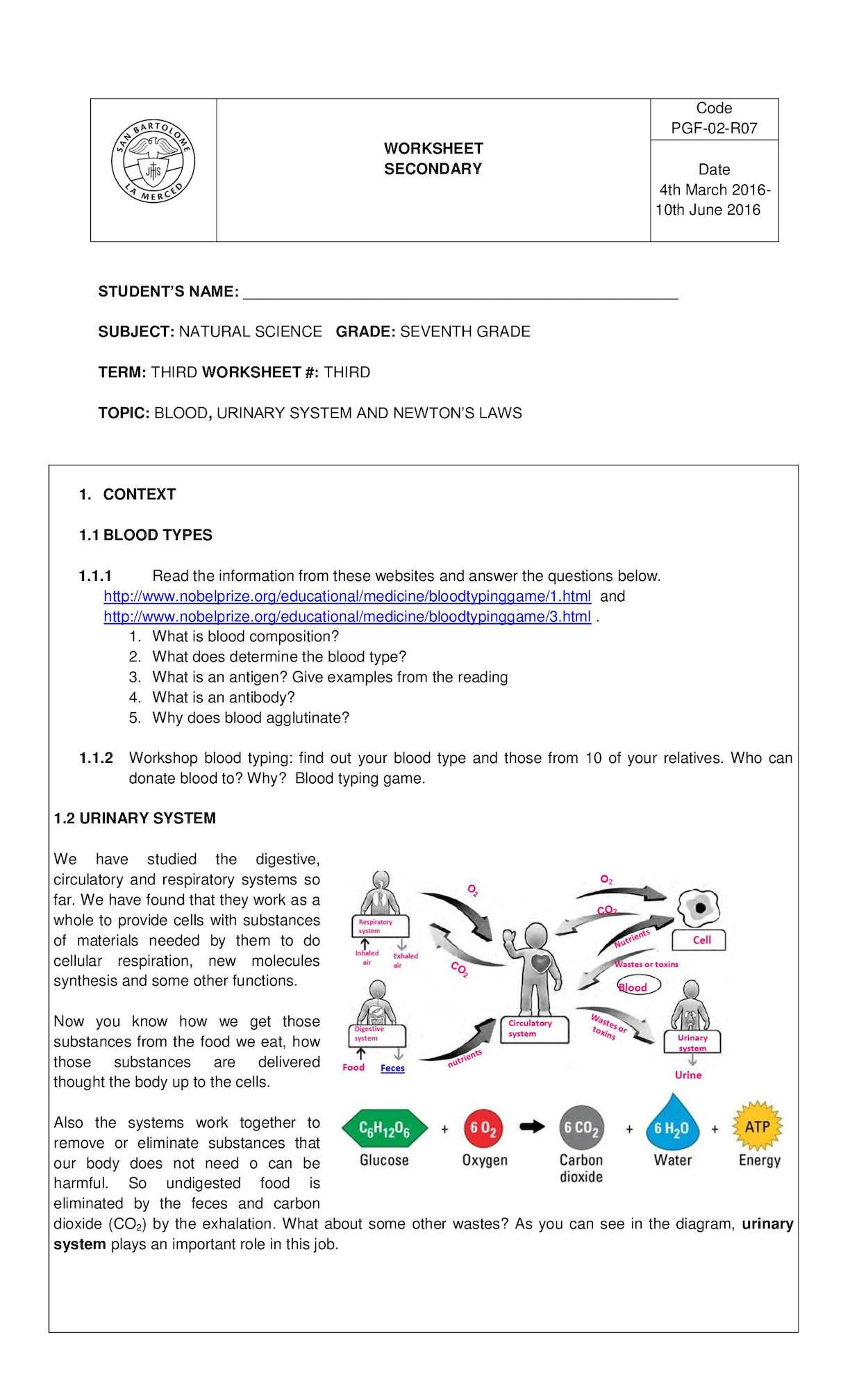 Anatomical Terms Worksheet Answers Calaméo Third Term Worksheet