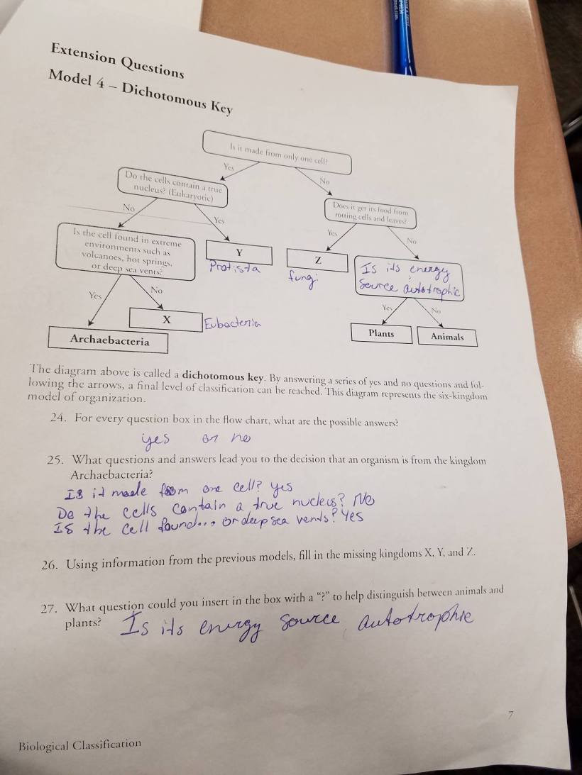 Biological Classification Worksheet Answers Biological Classification Worksheet Key Promotiontablecovers
