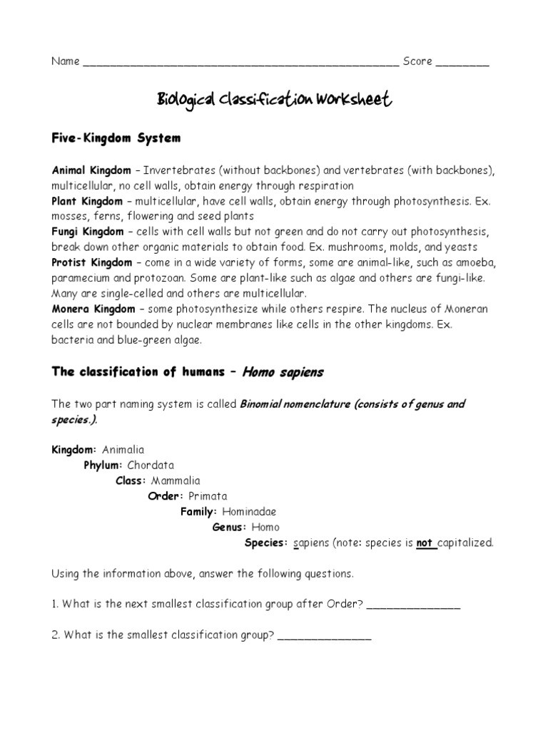 Biological Classification Worksheet Answers Classification Worksheets1 Pdf Taxonomy Biology