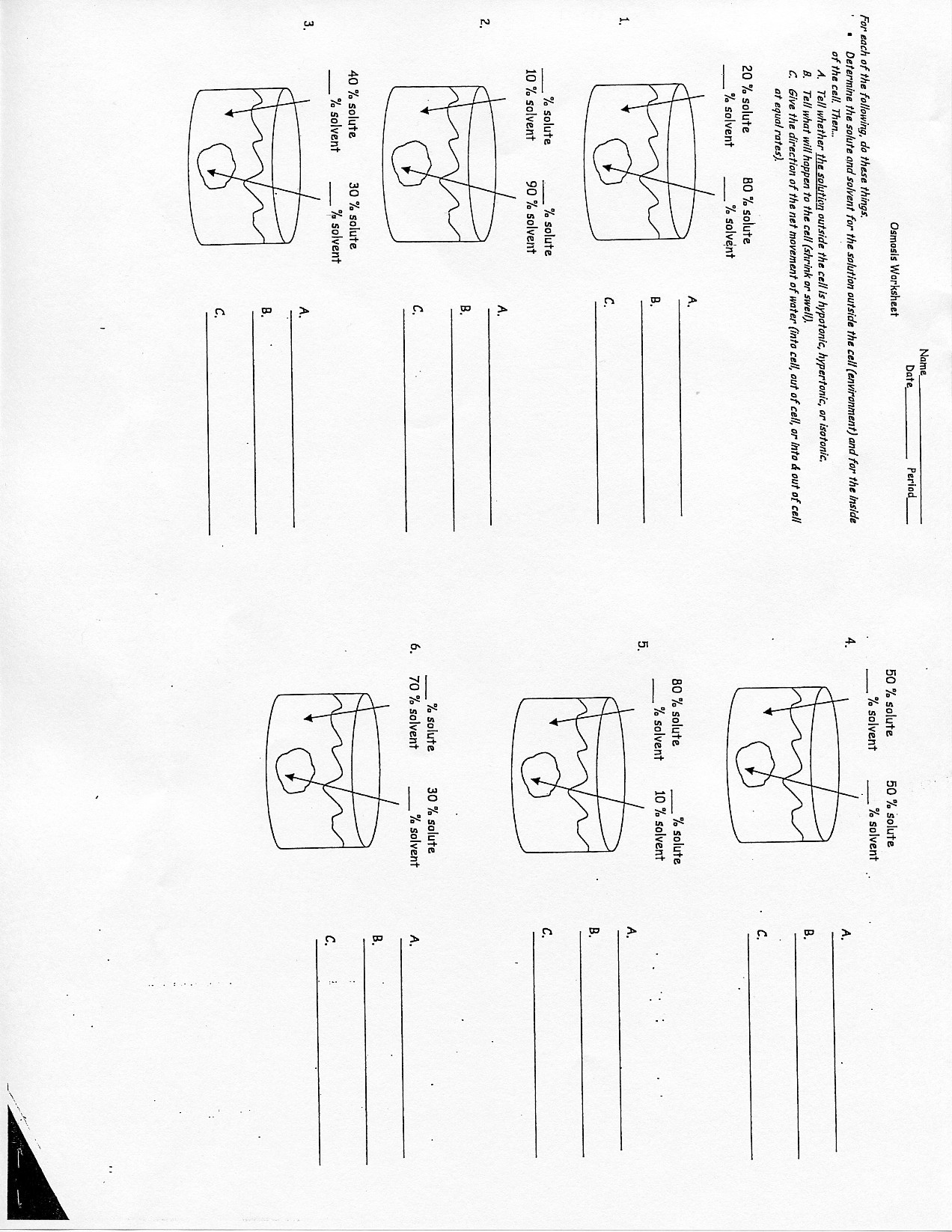 Cell Division Worksheet Answers Cell Division and Mitosis Worksheet Answers Printable
