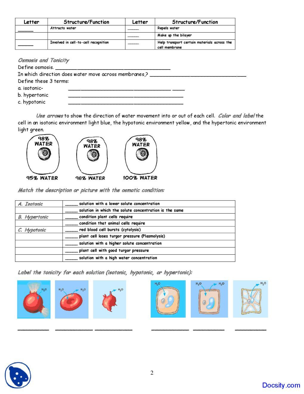 Cell Membrane Images Worksheet Answers Membrane Transport Worksheet Answers Promotiontablecovers