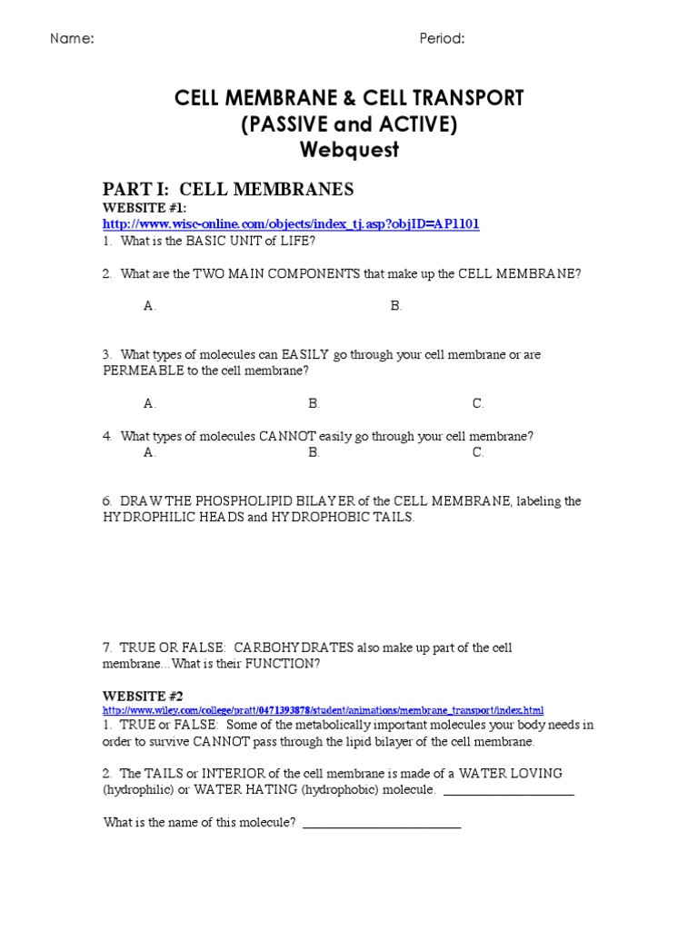 Cell Transport Worksheet Answers Cell Membrane and Transport Web Quest Osmosis
