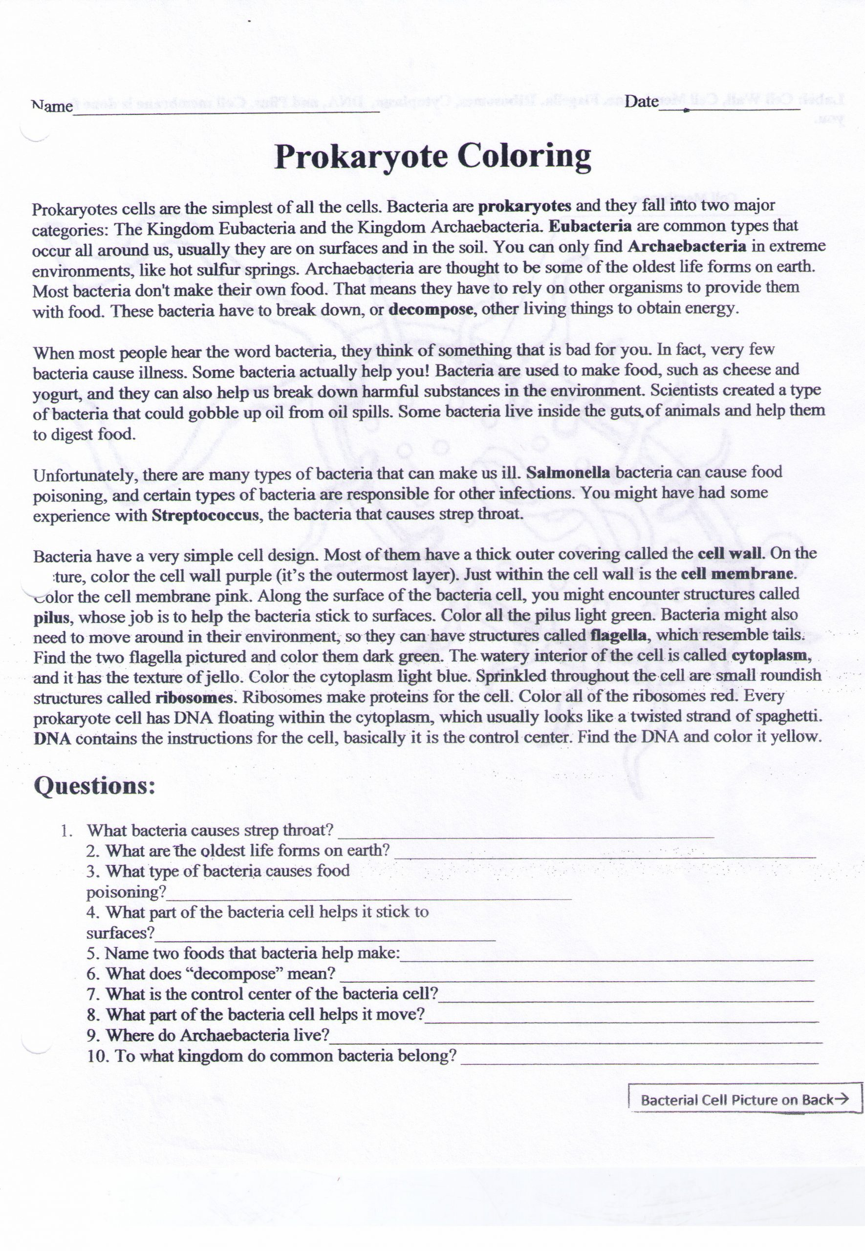 Cells Alive Worksheet Answer Key Adams Amelia Honors and Academic Biology Resources