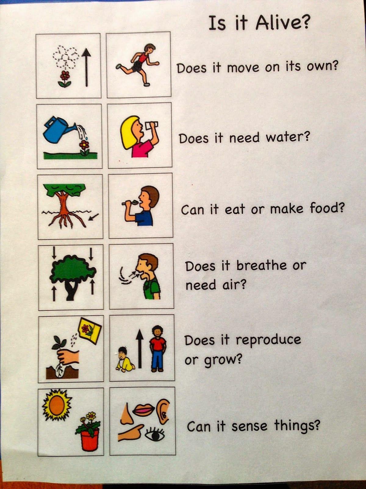 Characteristics Of Life Worksheet Characteristics Life Reading Worksheet