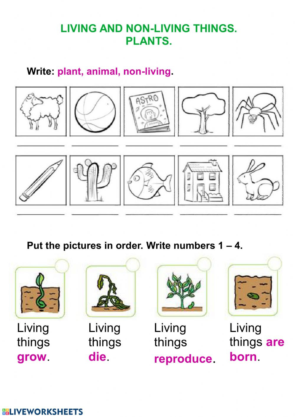 Characteristics Of Life Worksheet Living Things and Plants Interactive Worksheet