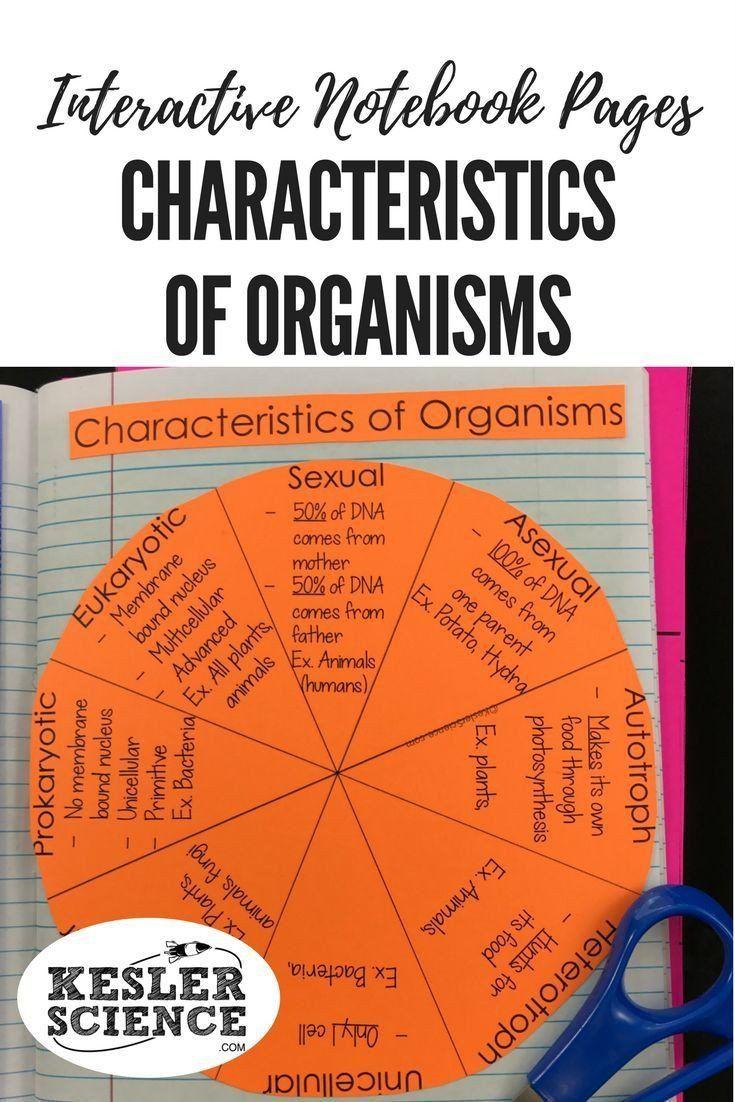 Characteristics Of Life Worksheet Pin On Printable Blank Worksheet Template