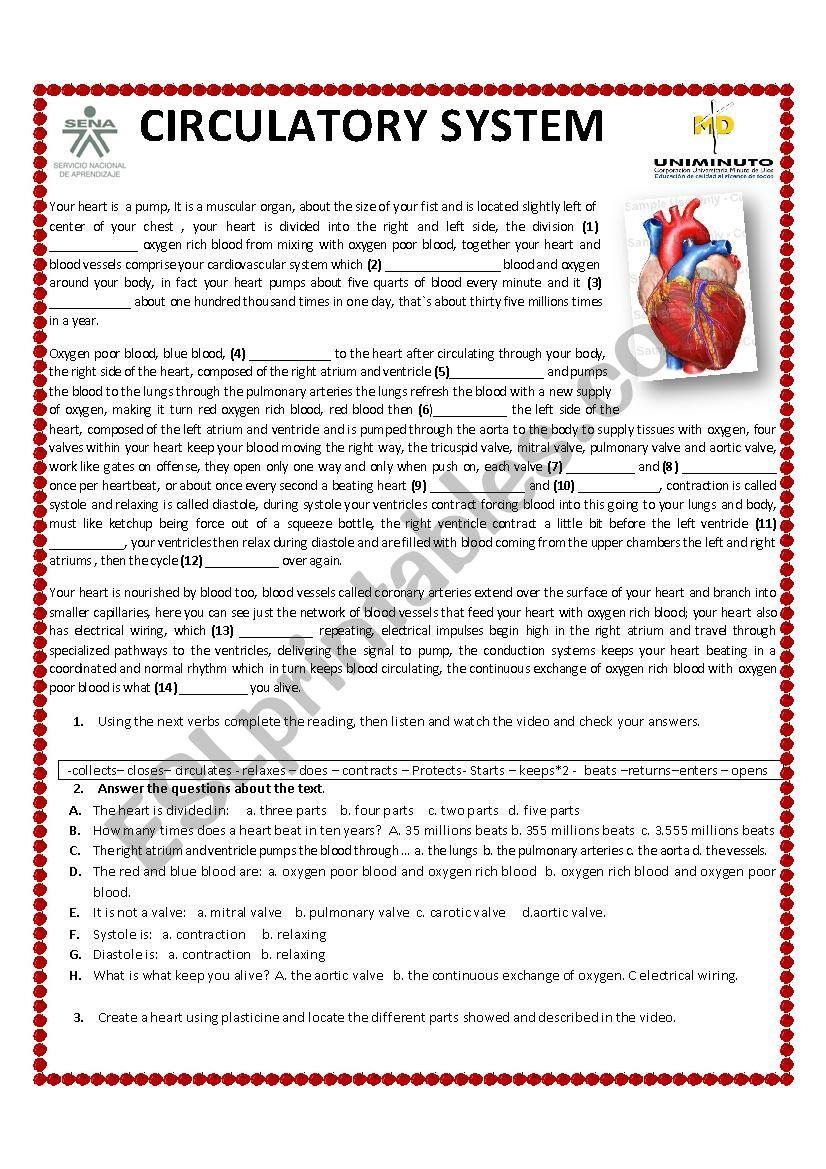 Circulatory System Worksheet Pdf Circulatory System Esl Worksheet by Cabeto85