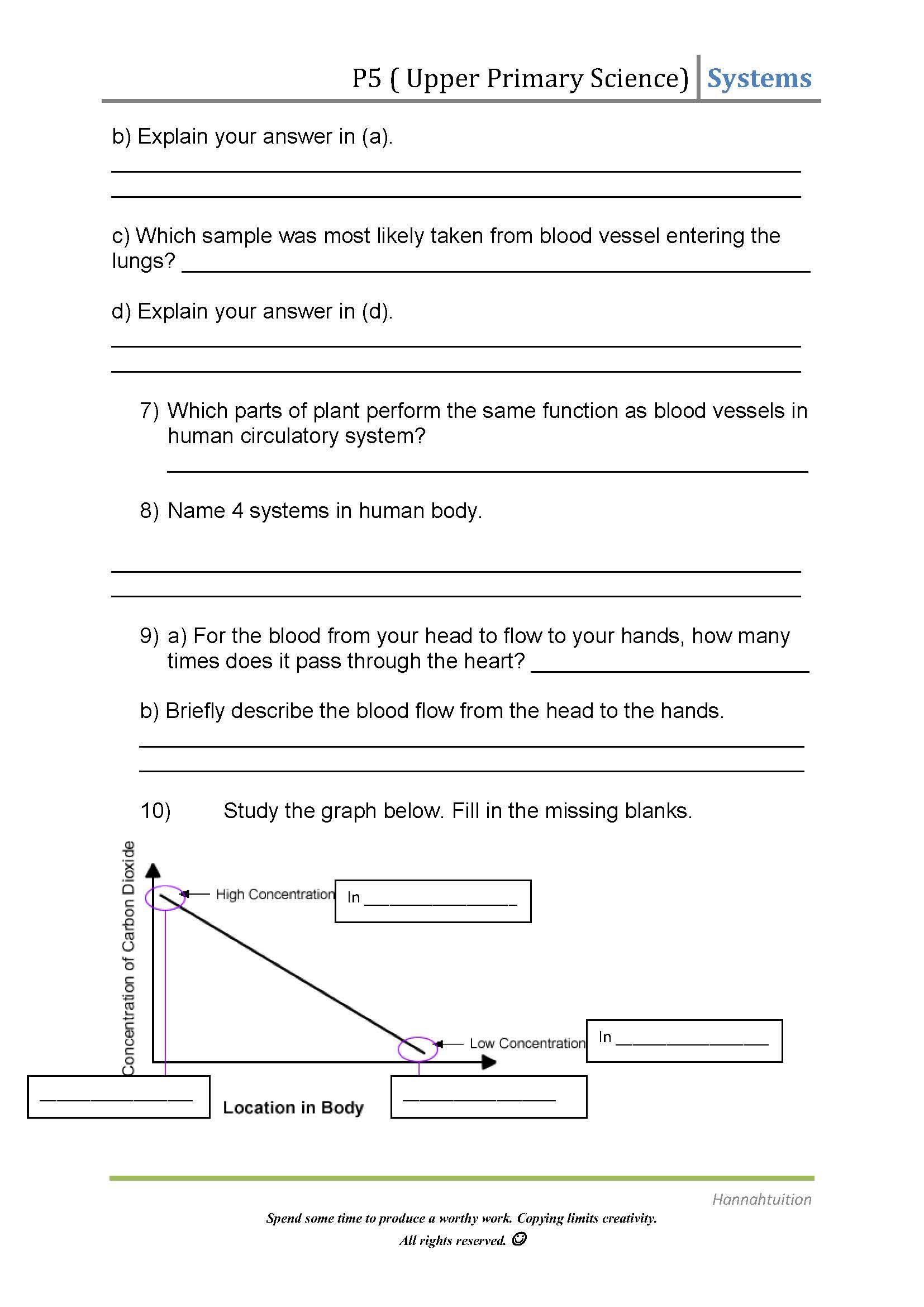 Circulatory System Worksheet Pdf Circulatory System Worksheet Answers