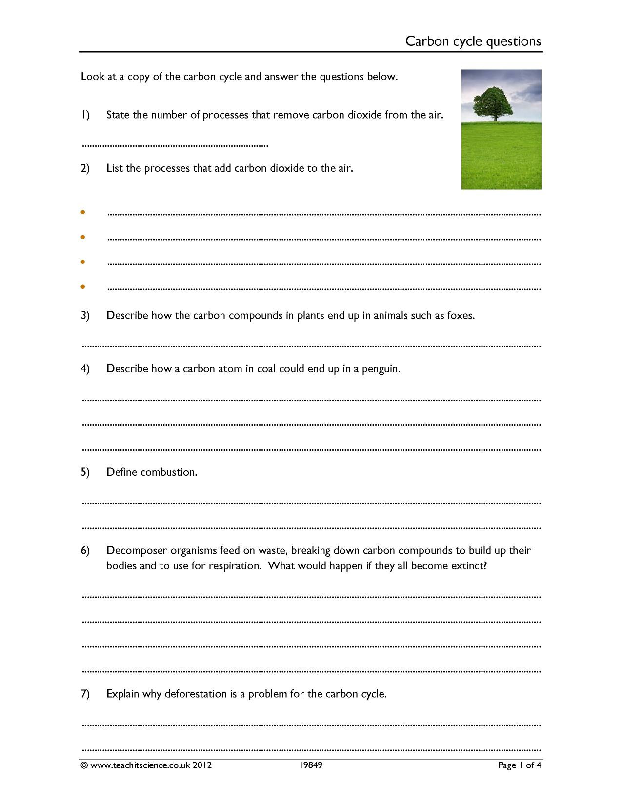 Cycles Worksheet Answer Key Carbon Cycle Questions Worksheet [pdf] Teachit Science
