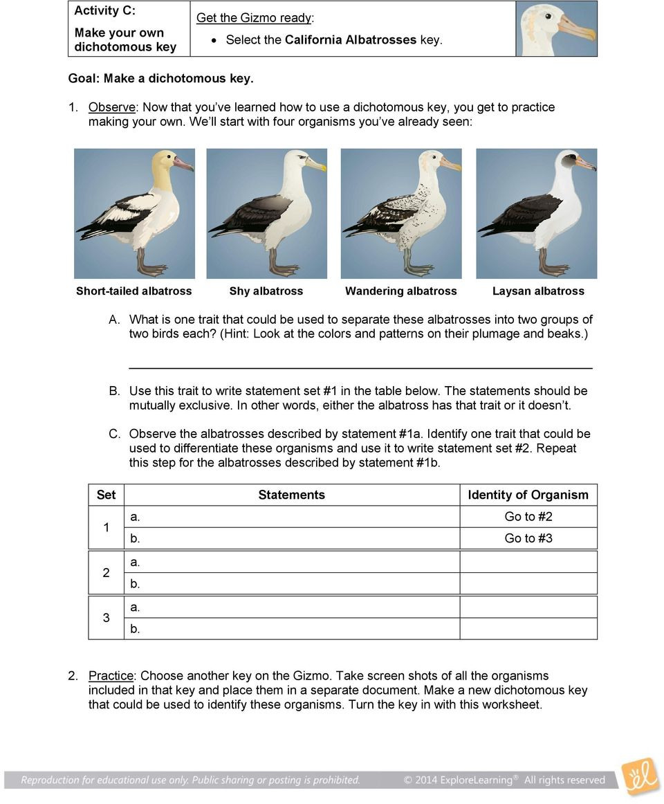 Dichotomous Key Worksheet Middle School Student Exploration Dichotomous Keys Pdf Free Download