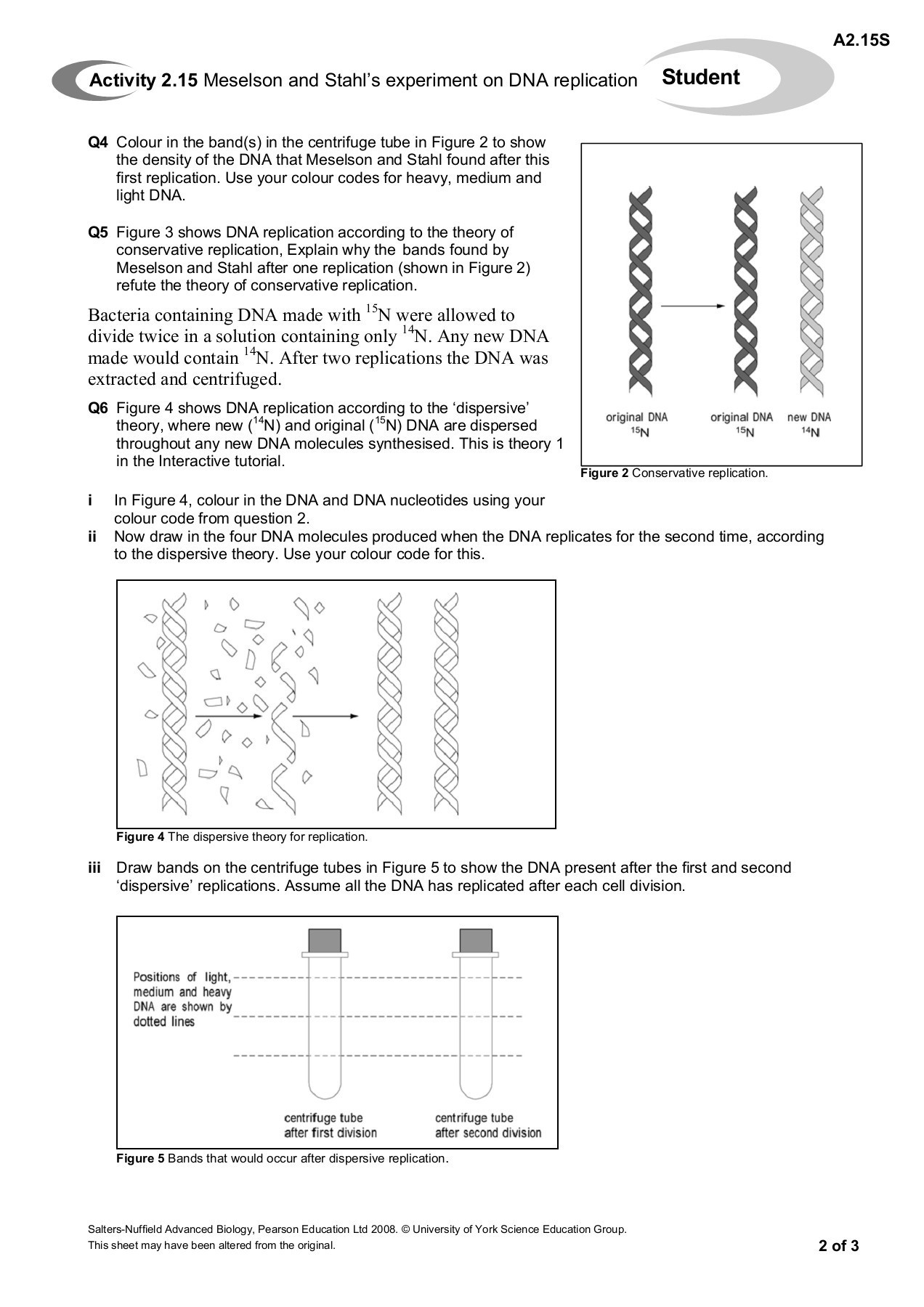 Dna and Replication Worksheet Activity 2 15 Meselson and Stahl S Experiment On Dna