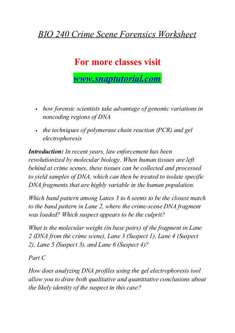 Dna Base Pairing Worksheet Answers Bio 240 Effective Munication Snaptutorial