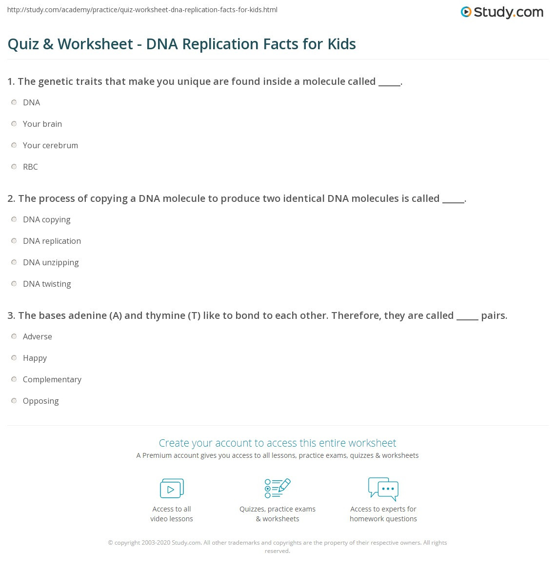 Dna Base Pairing Worksheet Answers Quiz & Worksheet Dna Replication Facts for Kids