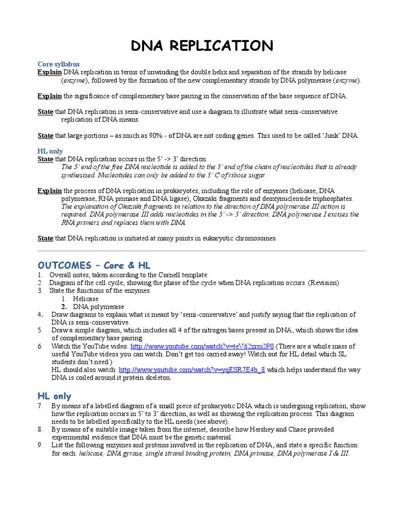 Dna Replication Worksheet Answers Dna Replication Worksheet Dna Replication