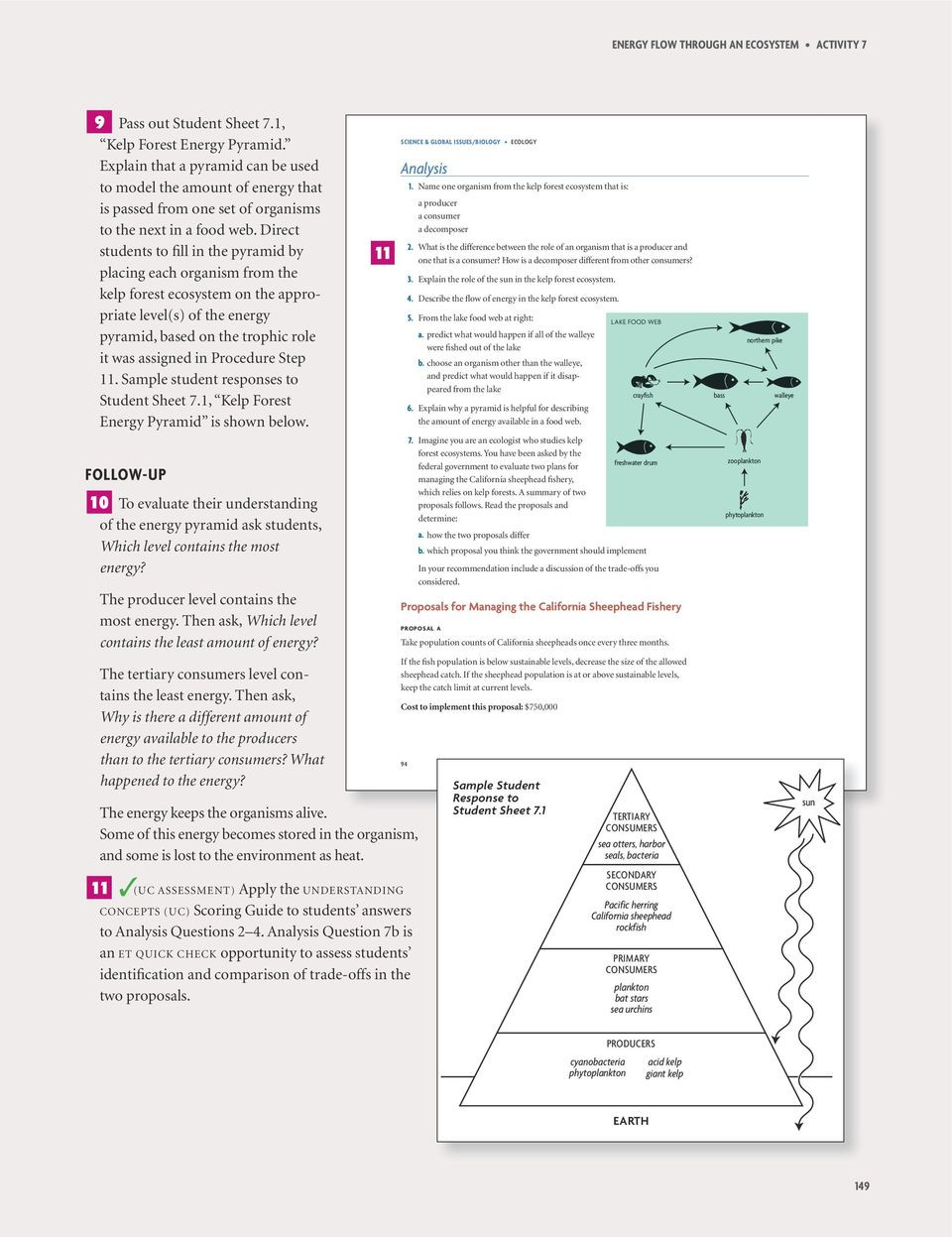 Energy Flow In Ecosystems Worksheet 7 Energy Flow Through An Ecosystem Investigation 2 C L A S S