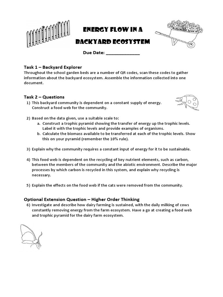 Energy Flow In Ecosystems Worksheet assignment Energy Flow In A Backyard Ecosystem