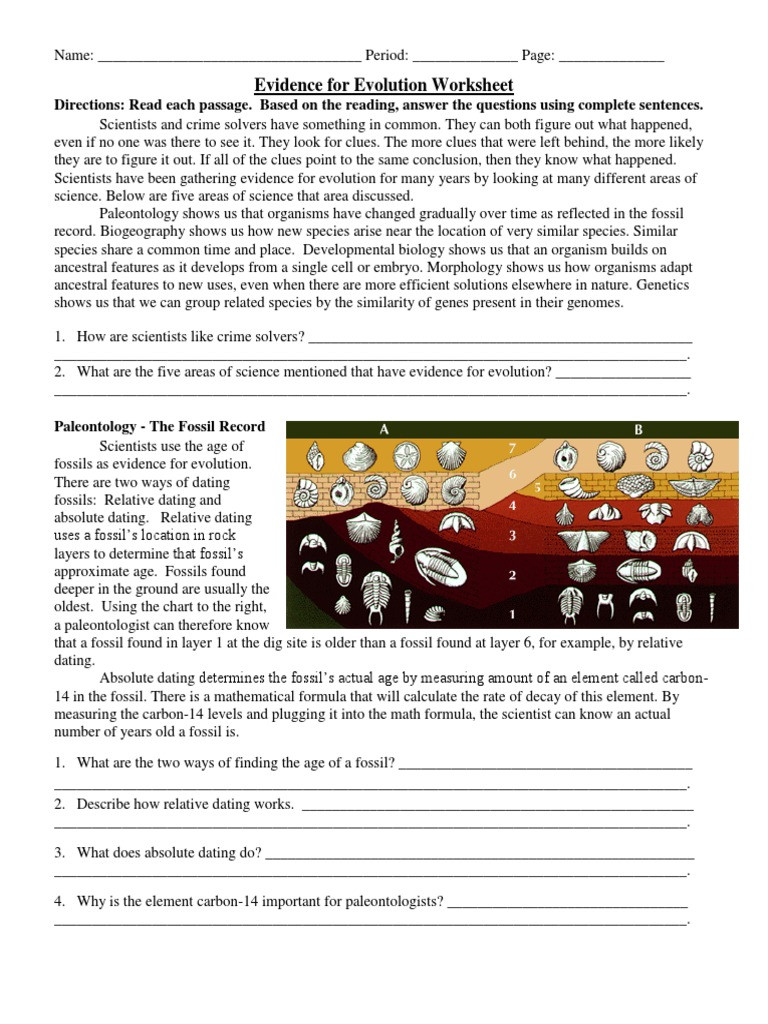 Evidence Of Evolution Worksheet Answers Evidence for Evolution Worksheet Evolution