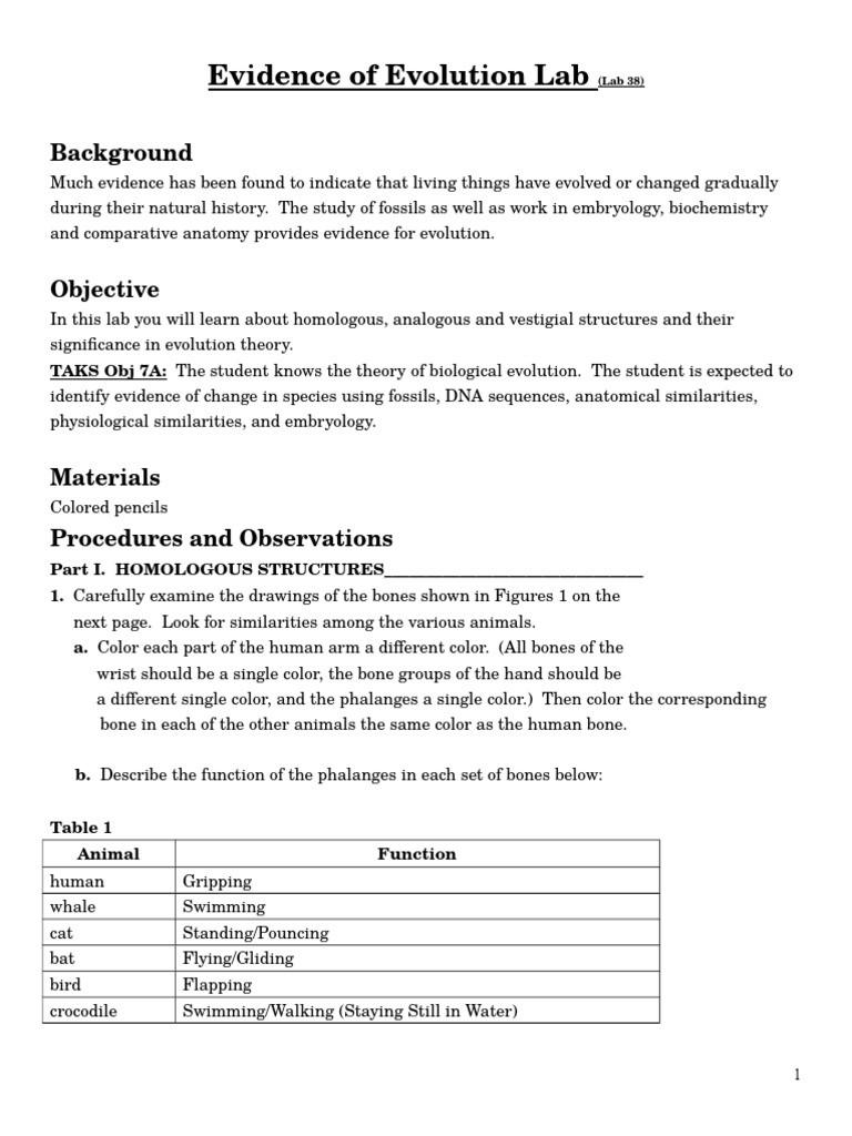 Evidence Of Evolution Worksheet Answers Evolutionary Evidence Lab Homology Biology