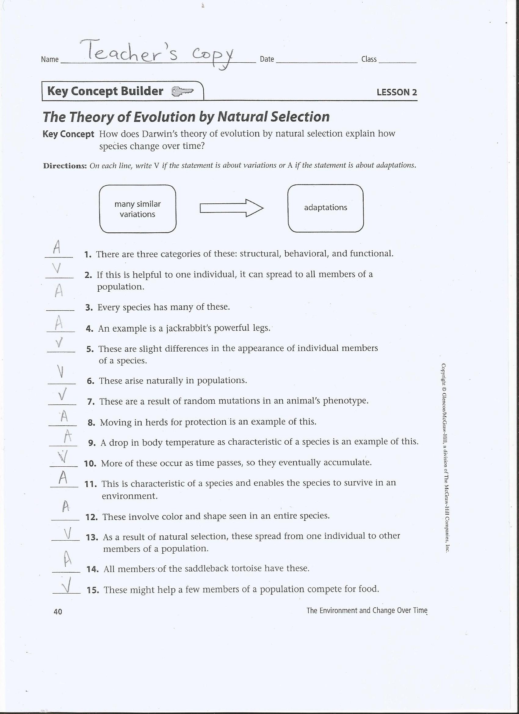 Evolution and Natural Selection Worksheet theory Evolution theory Evolution by Natural