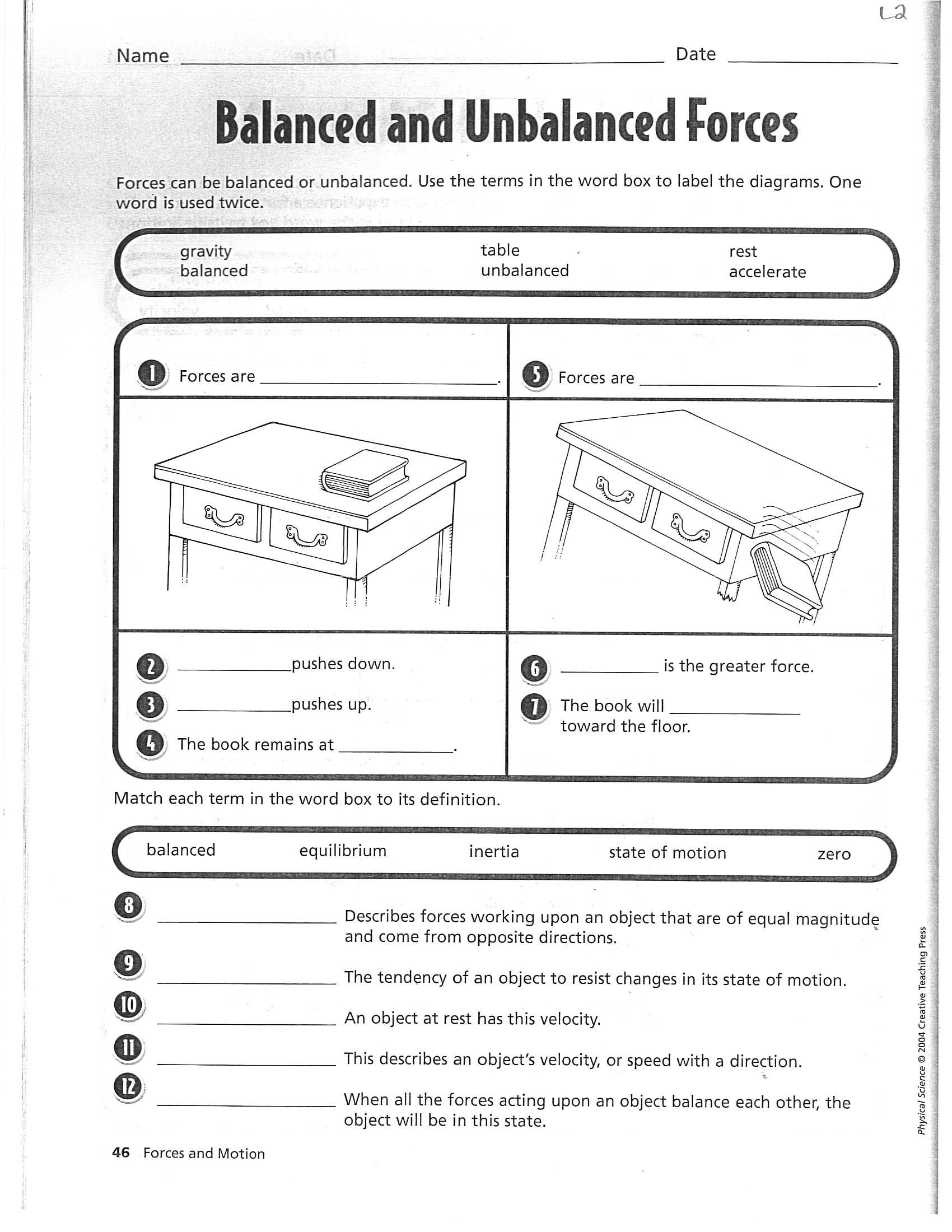 Forces and Motion Worksheet Term 4
