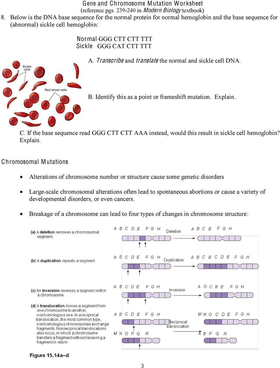 Gene and Chromosome Mutation Worksheet Gene and Chromosome Mutation Worksheet Reference Pgs In