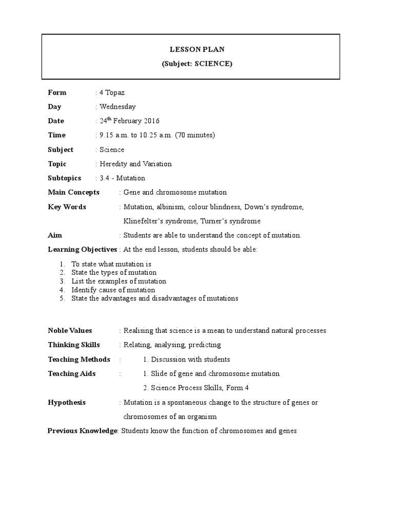 Lesson Plan Format 24 2