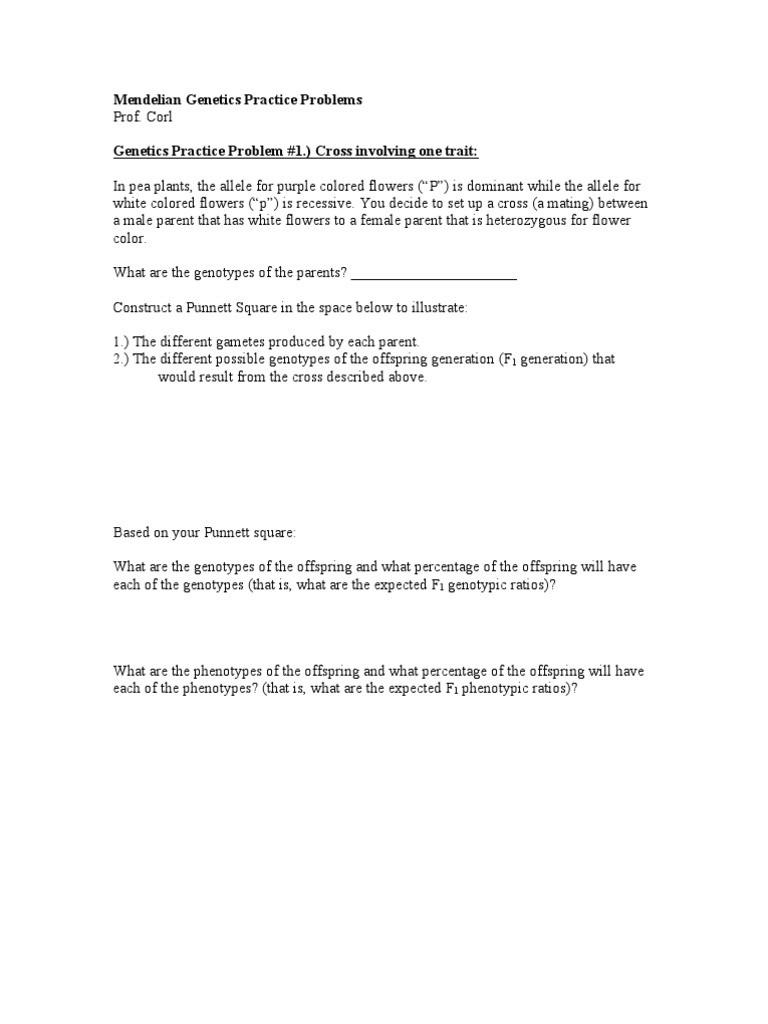Genetics Practice Problems Worksheet Answers Genetics Practice Problems Dominance Genetics