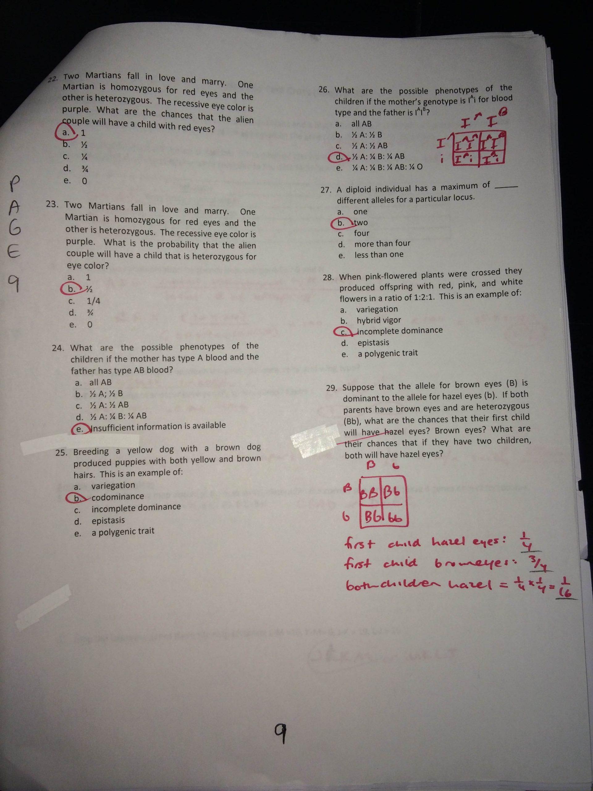 Genetics Practice Problems Worksheet Answers Key Genetics Practice Problems Packet P 6 16 Mrs