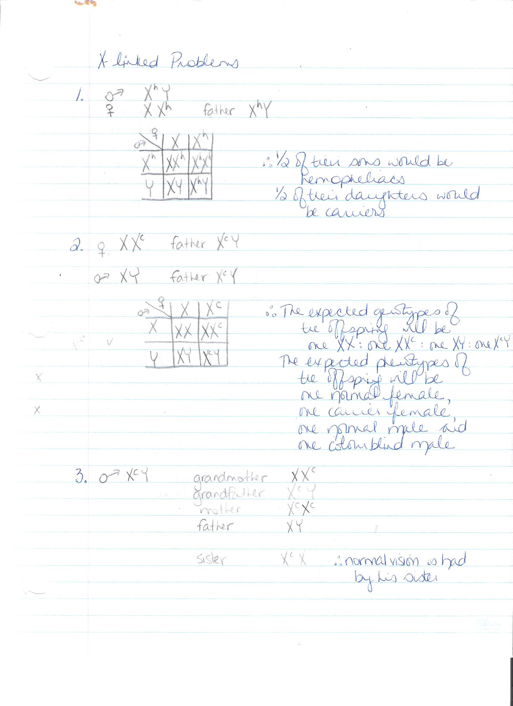 Genetics X Linked Genes Worksheet Genetics Mrs Hillier S Classes