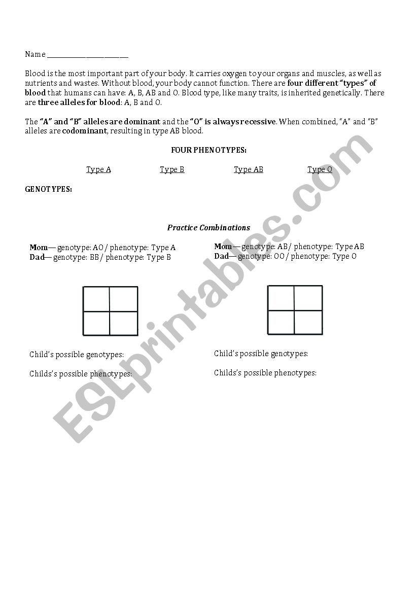 Genotypes and Phenotypes Worksheet Blood Type Genetics Esl Worksheet by Rdiazladh