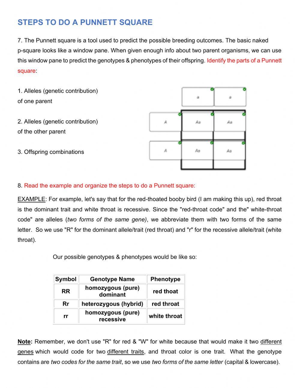 Genotypes and Phenotypes Worksheet Genetics Mendelian Genetics Interactive Worksheet