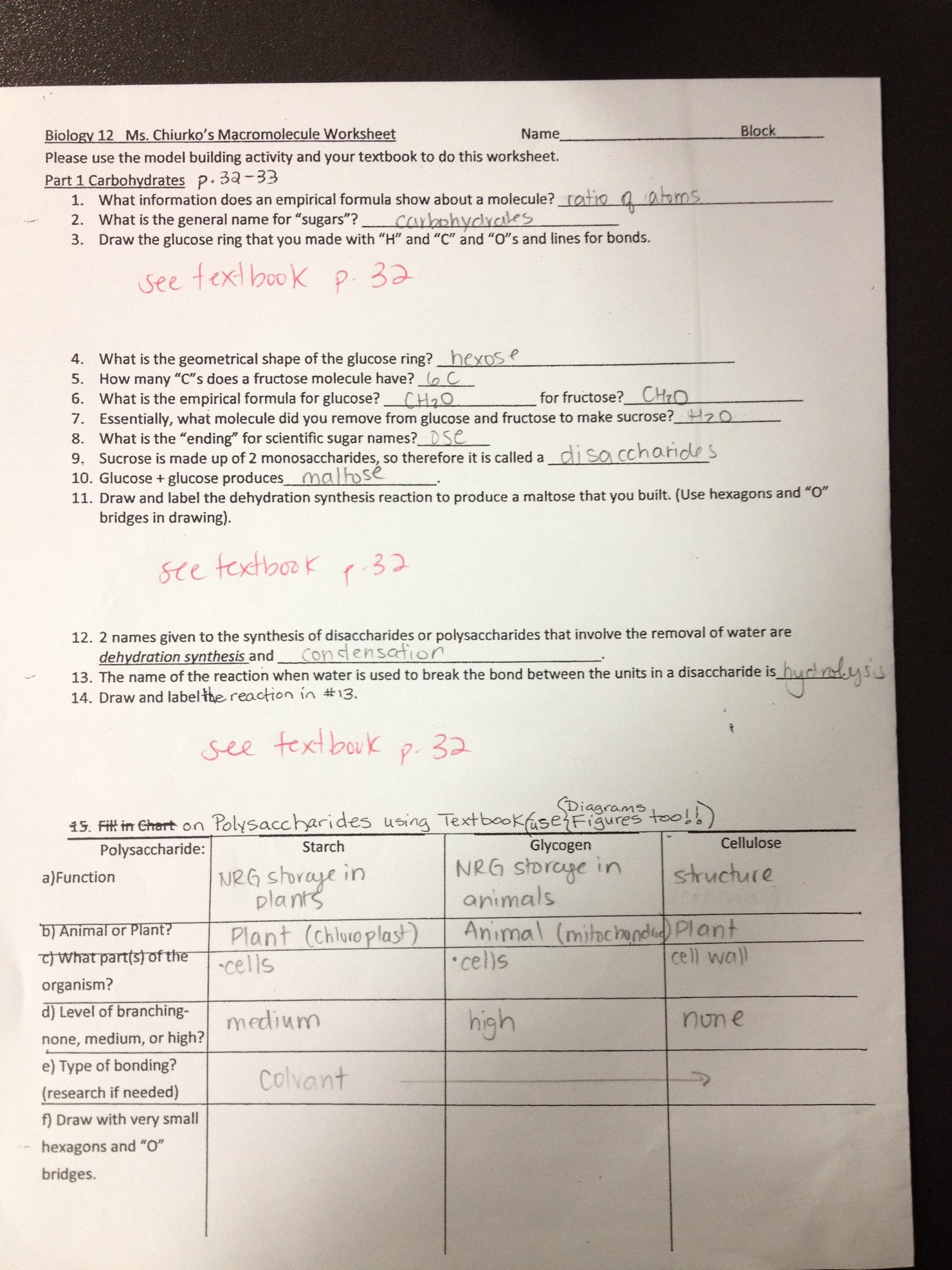 Lipids Worksheet Answer Key Carbohydrates Worksheet Answer Key