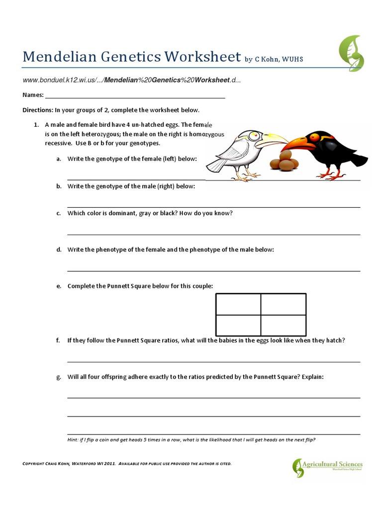 Mendelian Genetics Worksheet Answer Key Mendelian Genetics Worksheet Pdf