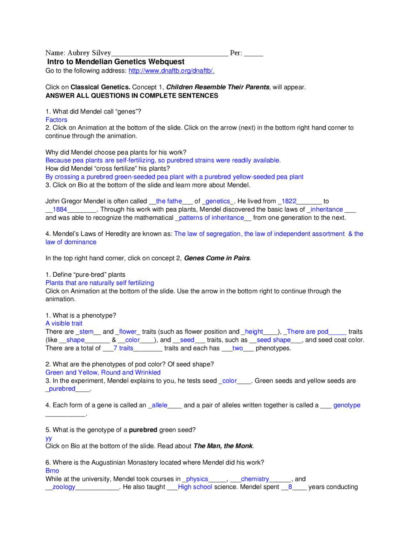 Mendelian Genetics Worksheet Answers Genetics Webquest Intro by Aubrey Lee issuu