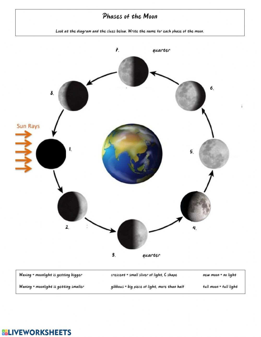 Moon Phases Worksheet Answers Phases Of the Moon Interactive Worksheet