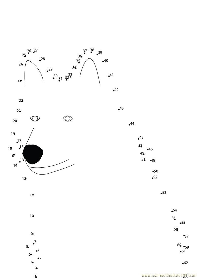 Peter and the Wolf Worksheet Peter and the Wolf Worksheet Google Search