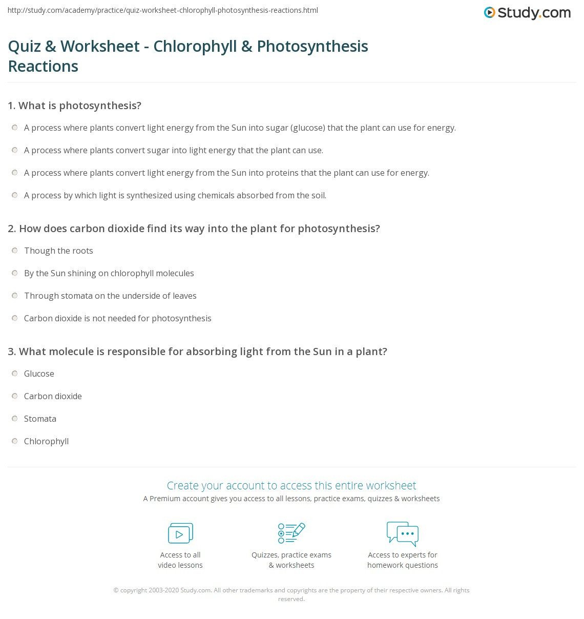 Photosynthesis Worksheet High School Quiz & Worksheet Chlorophyll & Synthesis Reactions