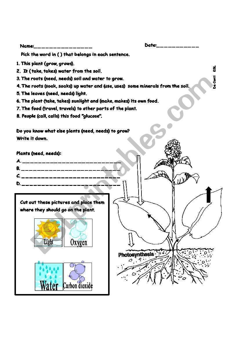 Photosynthesis Worksheet High School Synthesis Esl Worksheet by Belfer