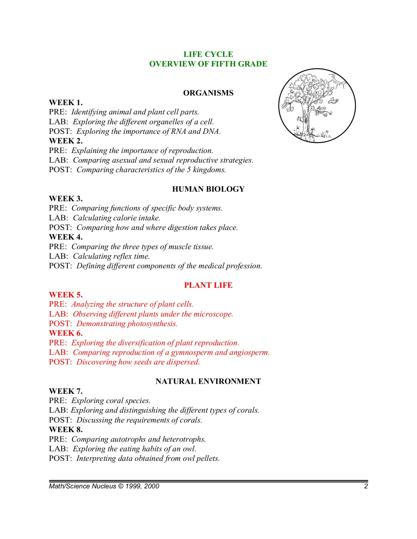 Plant Reproduction Worksheet Answers Fifth Grade Plant Life Pages 1 19 Text Version