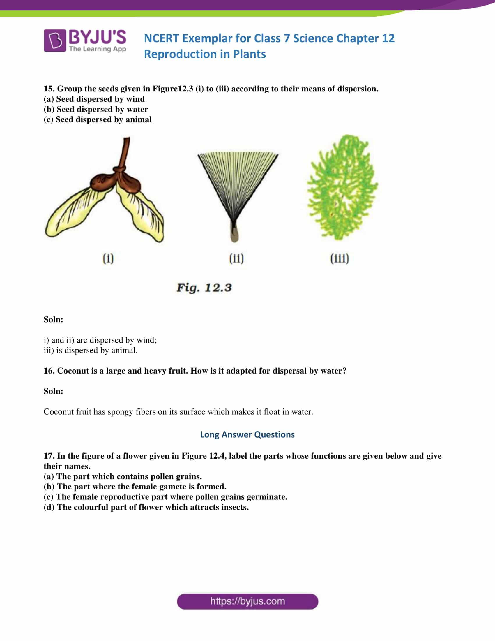 Plant Reproduction Worksheet Answers Seed Dispersal Worksheet