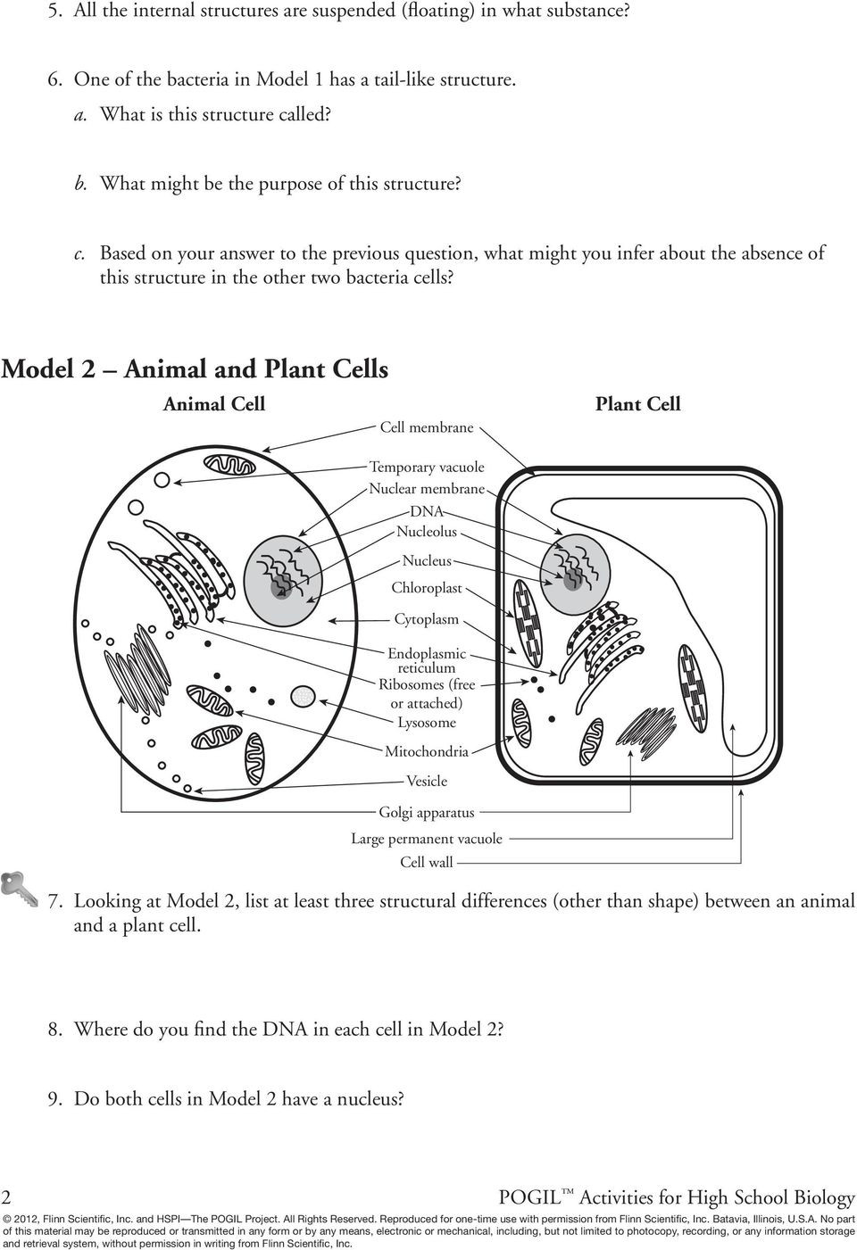 Prokaryotes Bacteria Worksheet Answers Prokaryotic and Eukaryotic Cells Pdf Free Download