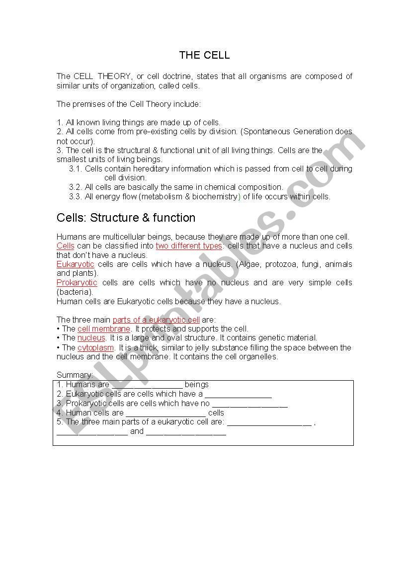Prokaryotes Bacteria Worksheet Answers the Cell Esl Worksheet by Mariona1
