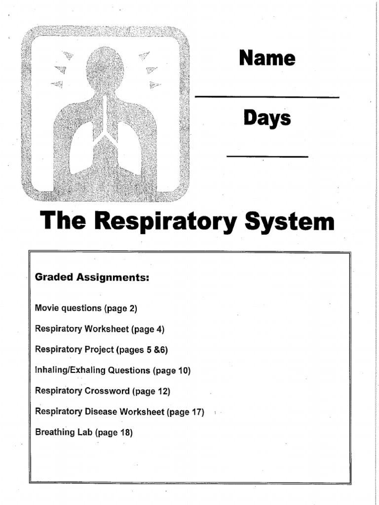 Respiratory System Worksheet Pdf Respiratory System Packet 14 Pdf