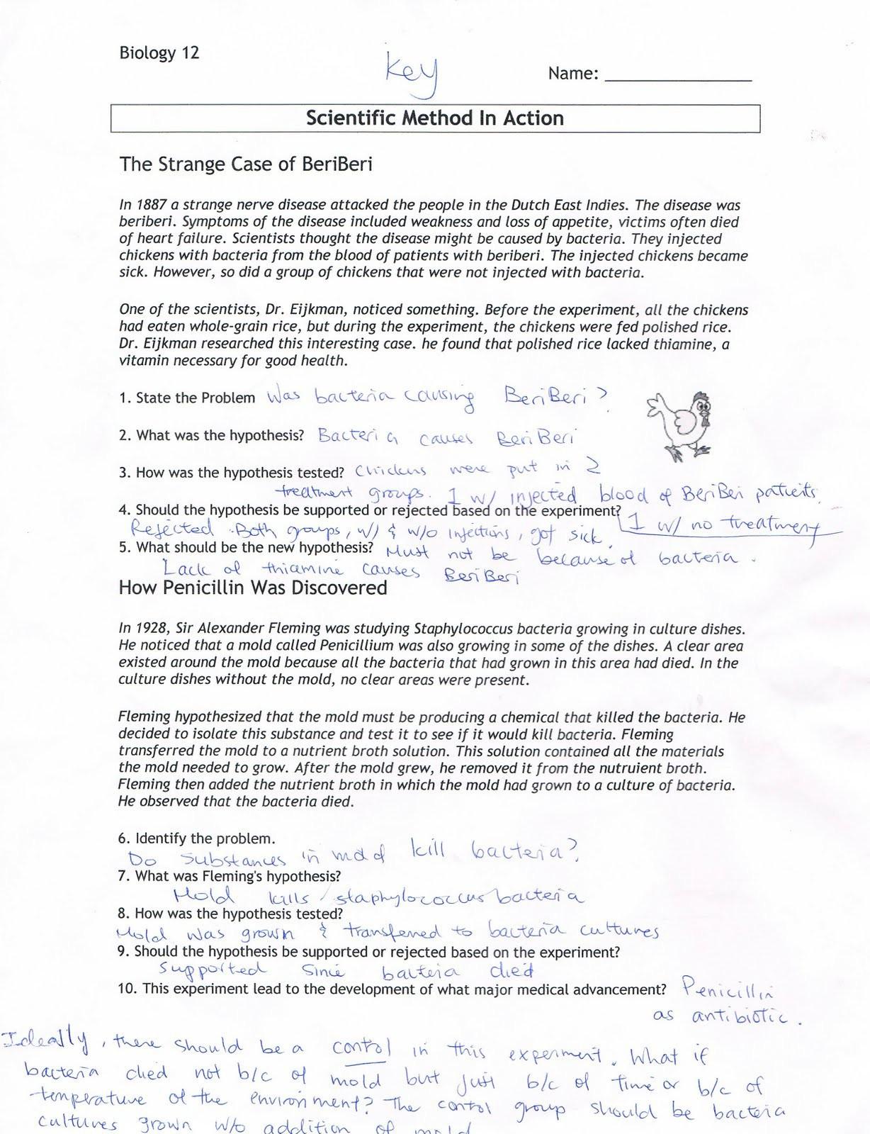 Scientific Method Story Worksheet Answers Scientific Method Worksheet Primary
