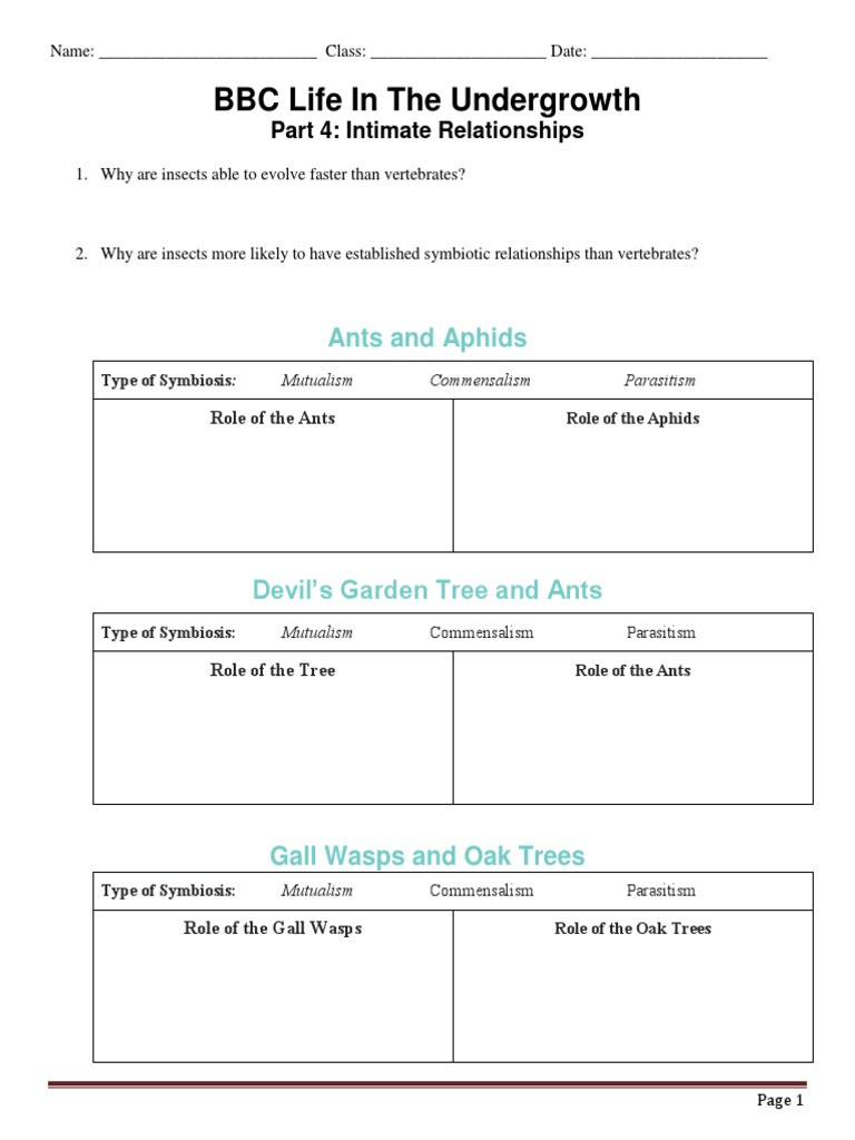 Symbiotic Relationships Worksheet Good Buddies Bbc Life In the Undergrowth Intimate Relationships
