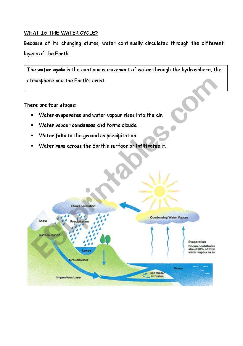 The Water Cycle Worksheet Answers Water Cycle Esl Worksheet by Flower9