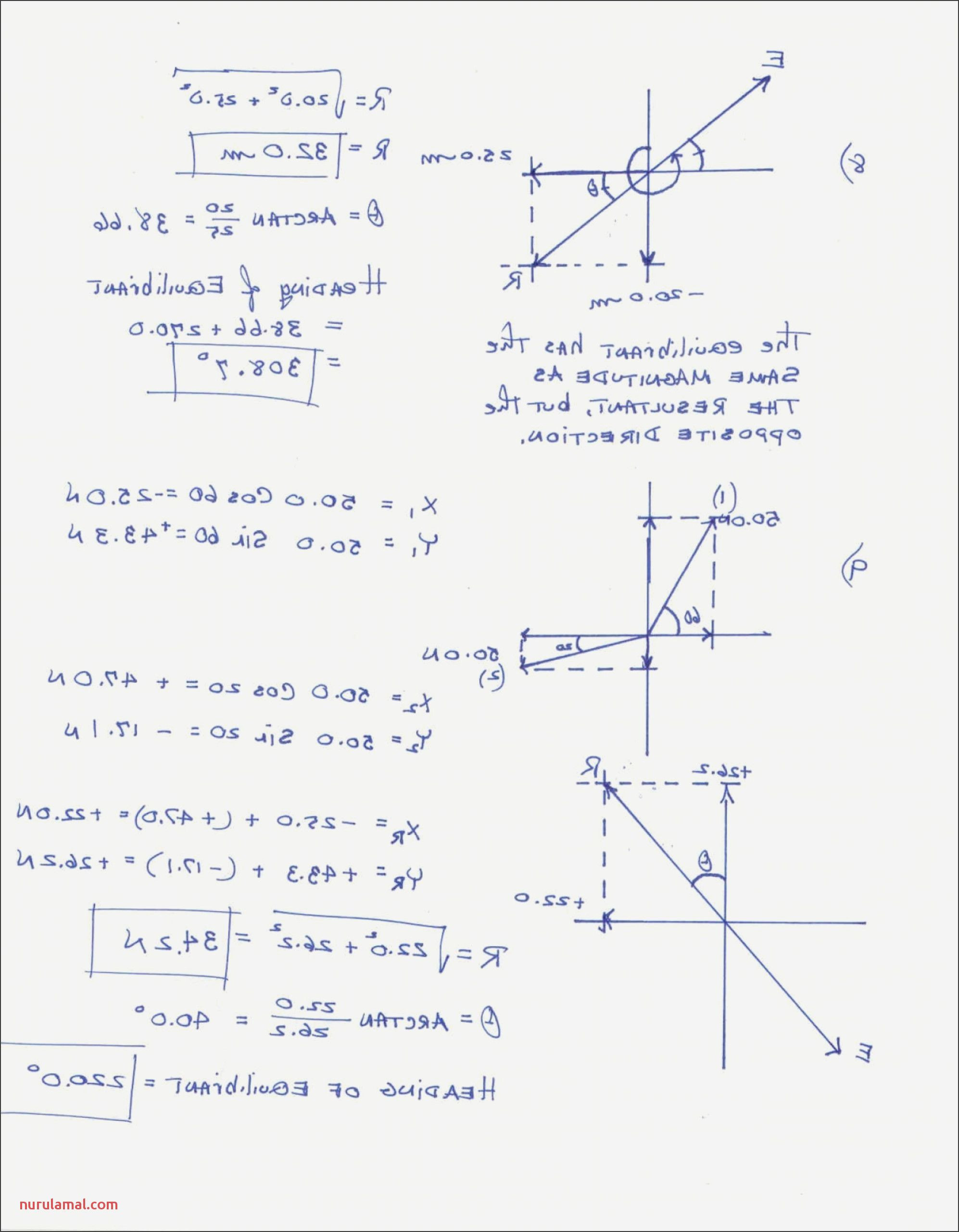 Vectors Worksheet with Answers Pin On Ahmed