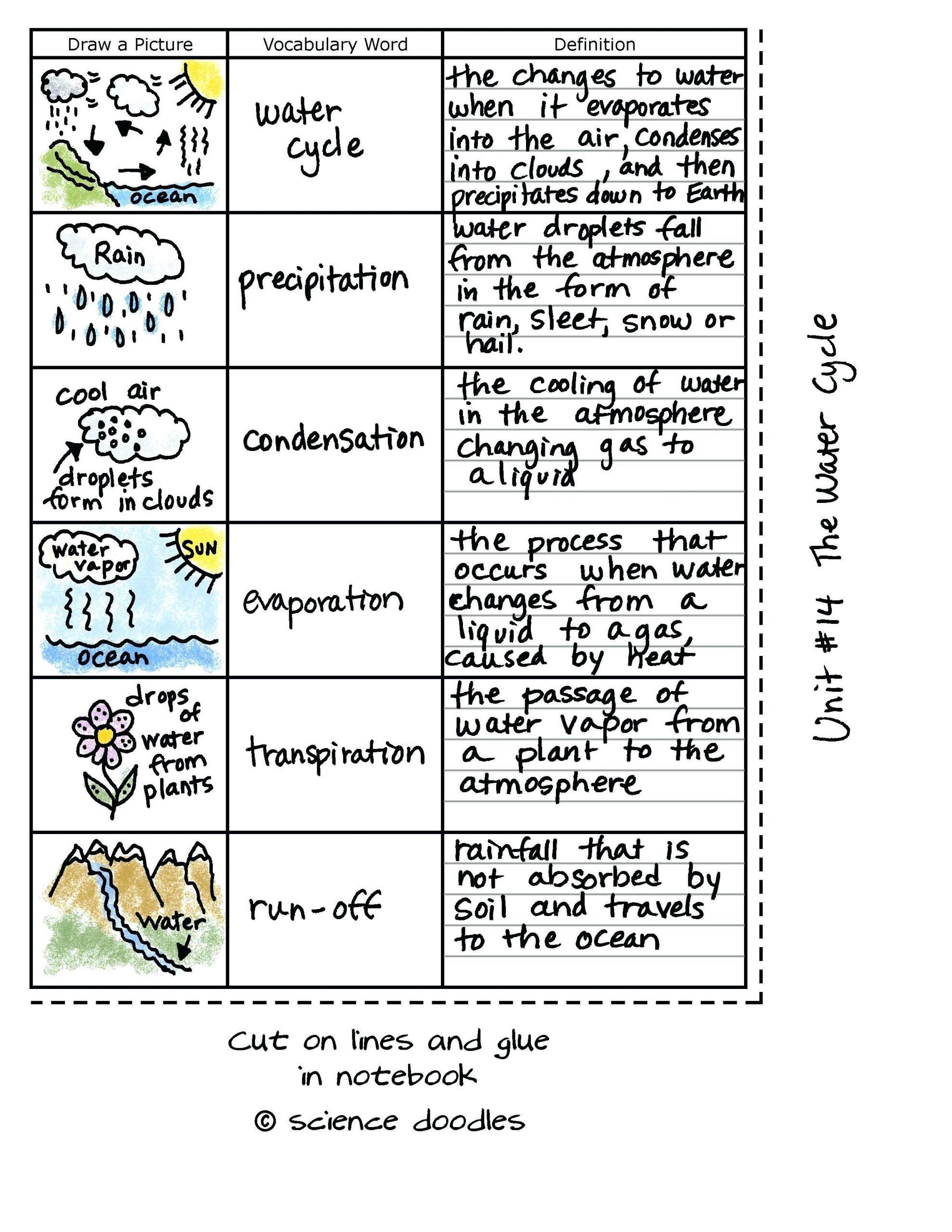 Water Cycle Worksheet Middle School   Worksheet for Education
