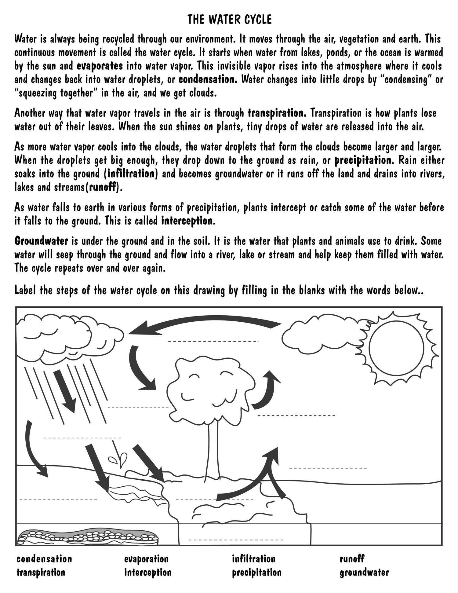 Water Cycle Worksheet Middle School Pin On Printable Blank Worksheet Template